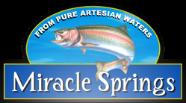 Miracle Springs Inc.-logo